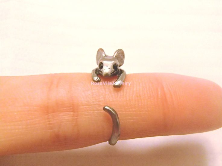 """I am not to much for """"critter"""" jewelry, but this little mouse ring is cute!  (aw)"""