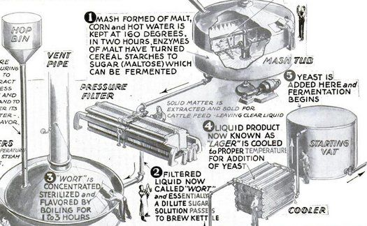 1933 brewing guide from the pages of Popular Science. How To Make Beer [Infographic]
