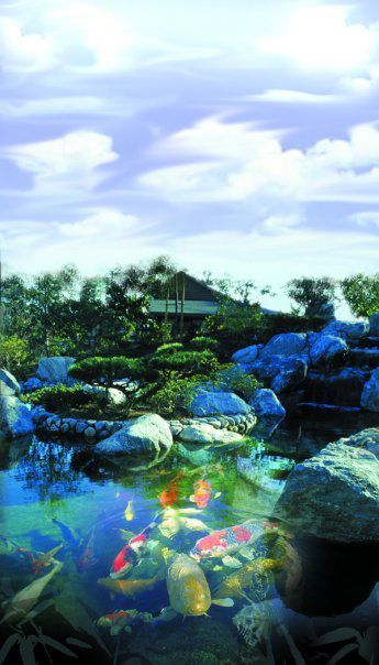 The Japanese Friendship Garden is one of the cultural institutions in the Balboa Park. This Japanese Garden is also known as San Kei En.