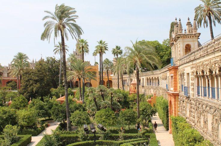 Jardines de los Reales Alcazares |   Seville, Spain