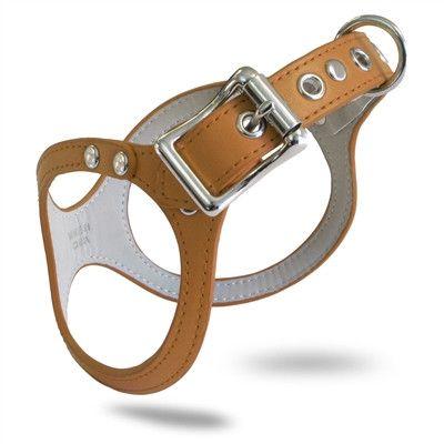 Buddy Belt two Step In Dog Harness - Carmel
