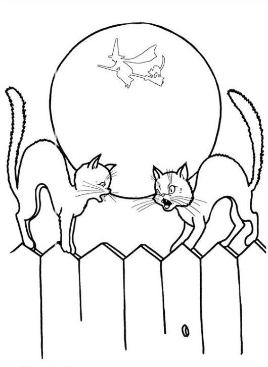 Halloween Coloring Pages Black Cat - Animal Coloring Pages, Cat Coloring Pages…