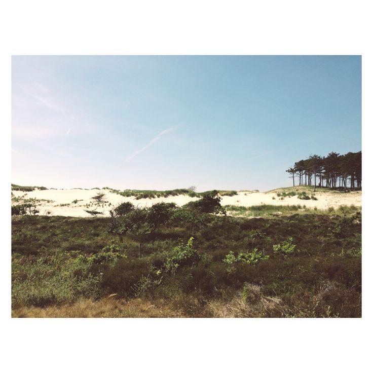 Als ik mijn ogen dichtdoe, dan ruik ik de naaldbomen, de zee en het witte zand van de duinen. Het is even alsof ik in Frankrijk ben. Ik kom hier tot rust. Prachtig Schoorl met al haar ontdekkingen. Foto: Margo Kristel.