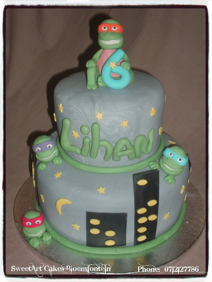 Ninja Turtle Cake For more info & orders email sweetartbfn@gmail.com or call 0712127786.  Connect with us on Facebook at https://www.facebook.com/SweetArtCakesBfn (WORKSHOPS AVAILABLE)
