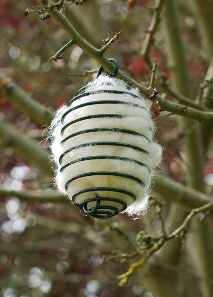 Spiral with wool refills Down to £14.99 - http://www.woollygreen.com/2014/11/26/a-bounty-of-birds/