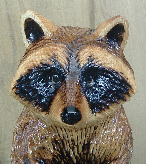 Chainsaw carving of raccoon close up face chainsaw carvings tree