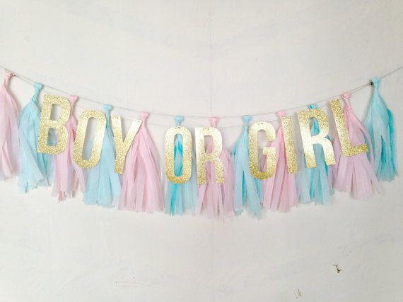 Welcome to the One Stylish Party Etsy Shop! This listing is for one Gender Reveal Glitter and Tassel Banner featuring the words BOY OR GIRL. The