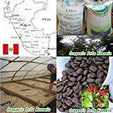 珈琲屋ほっと 無農薬栽培コーヒーペルー 400g(約40杯分) #Perú #ペルー