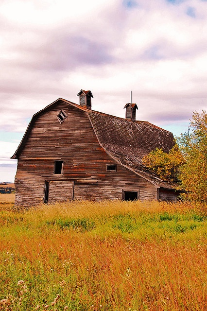 Country Living - Oh, how I love old barns..**