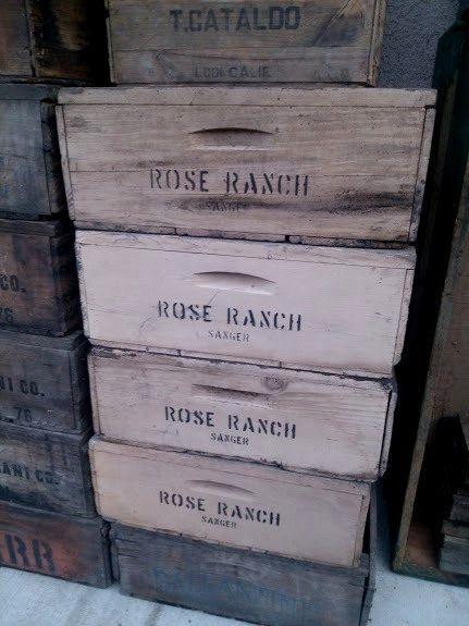 Vintage Rose Ranch Sanger Fruit Boxes - Lugs - Fruit Crates - Old Wood Box - Wall Book Shelf - Storage Bins - Wood Rustic Crate Shelf
