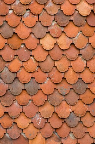 Roof Tiles Over Garden In Southwest England, Showing The Varying Colors Of  The Clay.