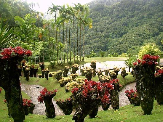 16 best Jardin de Balata- Martinique images on Pinterest Caribbean