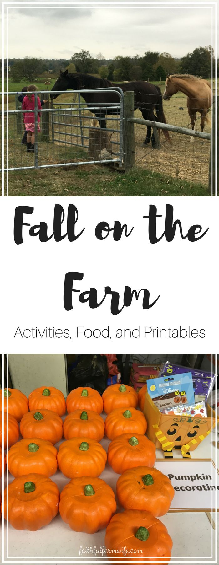 Are you hosting a fall farm fest this year? Glean ideas for activities, food, and decorations in this list that I put together from our last fall fest!