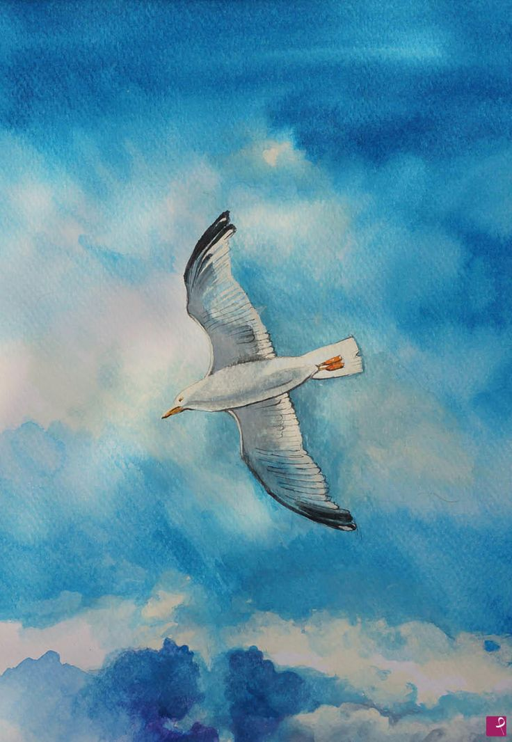 Gabbiano in volo -2 di Natalia Khromykh