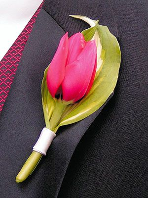 single tulip boutonniere - http://specialmoments1.files.wordpress.com/2009/02/tulip-and-leaf.jpg