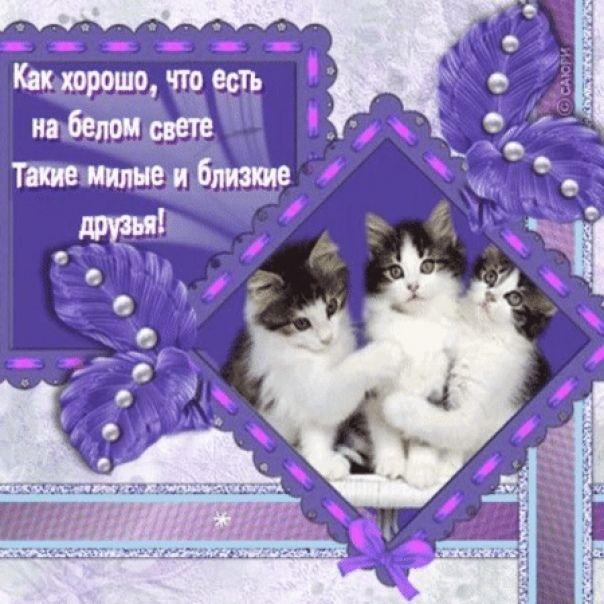 Милым друзьям открытка