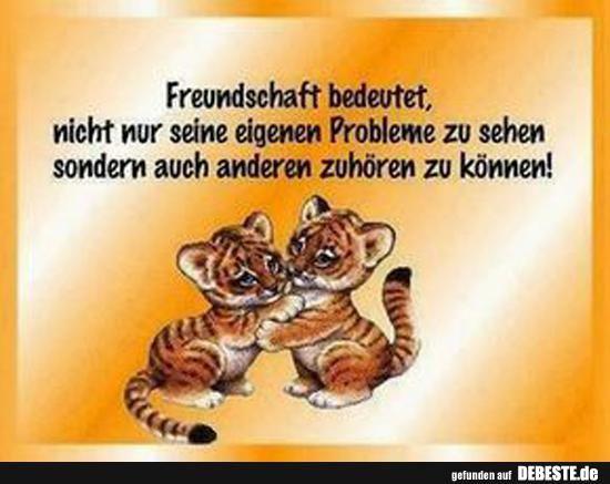 Freundschaft bedeutet, nicht nur seine eigenen.. | Lustige Bilder ...