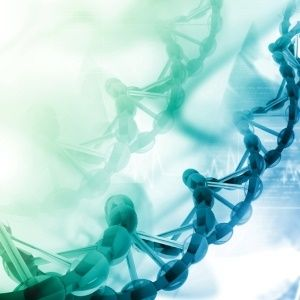 Scientists might soon store info in human DNA