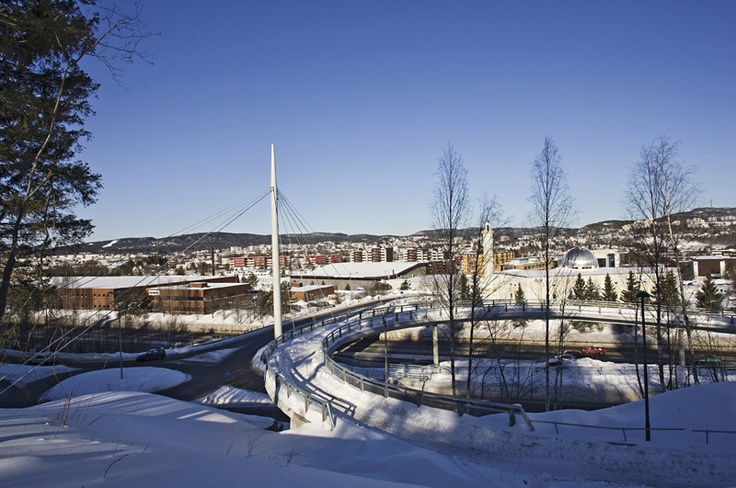 A #bridge for pedestrian and bicycle between Ellingsrud and Furuset centre over Karihaugveien and E6 Oslo