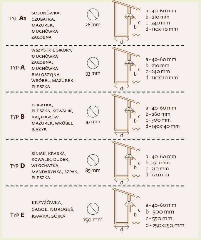 Budka lęgowa dla ptaków – krok po kroku. | Produkty Vidaron - skuteczna ochrona drewna