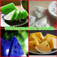 Sıcak satmak yeni tohumlar, Karpuz tohumları 300 adet  kırmızı/sarı/beyaz/mavi eti karpuz tohumları, Lezzetli meyve tohum   gülser