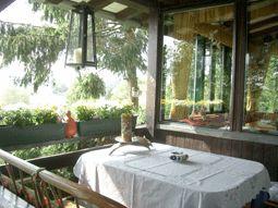 Ruhiges Ferienhaus in der Eifel