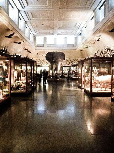 naturhistoriska museum, Göteborg Sweden