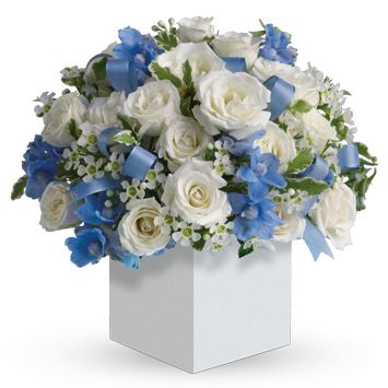 Send Flowers For New Born Baby Boys ♥  Flower Delivery Australia Wide