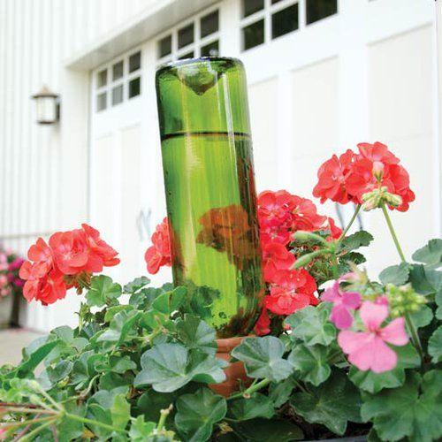 25+ best Watering Essentials images on Pinterest | Essentials ...
