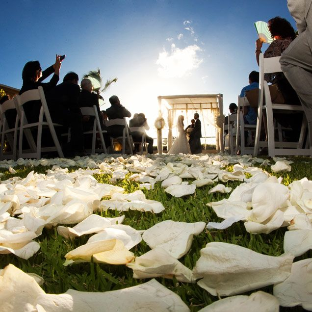 Green grass, blue skies, ivory petals... could this @Mandy Dewey. Maui  WeddingsDestination ...