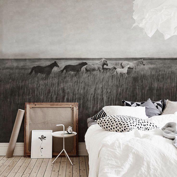 Cheval Fonds décran HD Arrièreplans Wallpaper