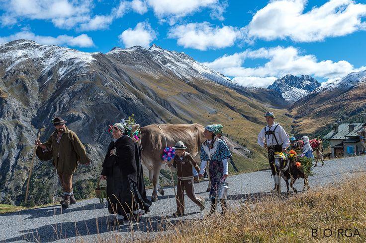 Cultura e trdizioni #Livigno, #transumanza, #montagna