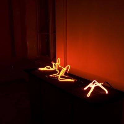 Fénylények-Luminous creatures