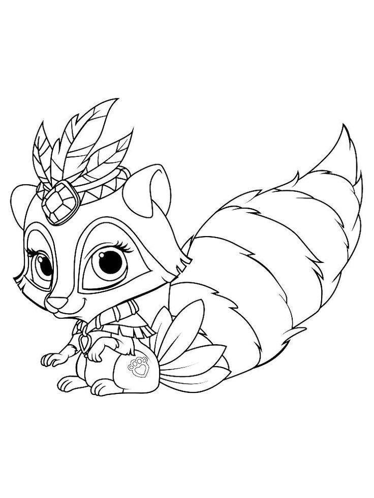 Chester raccoon coloring page raccoons are small mammals