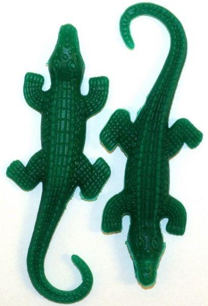 Alligatorer som vokser i vann