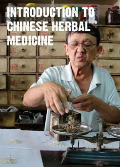 introduction to traditional chinese medicine and medicinal herbs