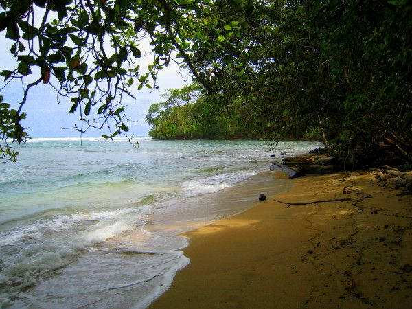 One of the tiny beaches you can have all to yourself in the Gandoca Manzanillo wildlife refuge, southern Caribbean coast looking towards Punta Mona 🌊🍃