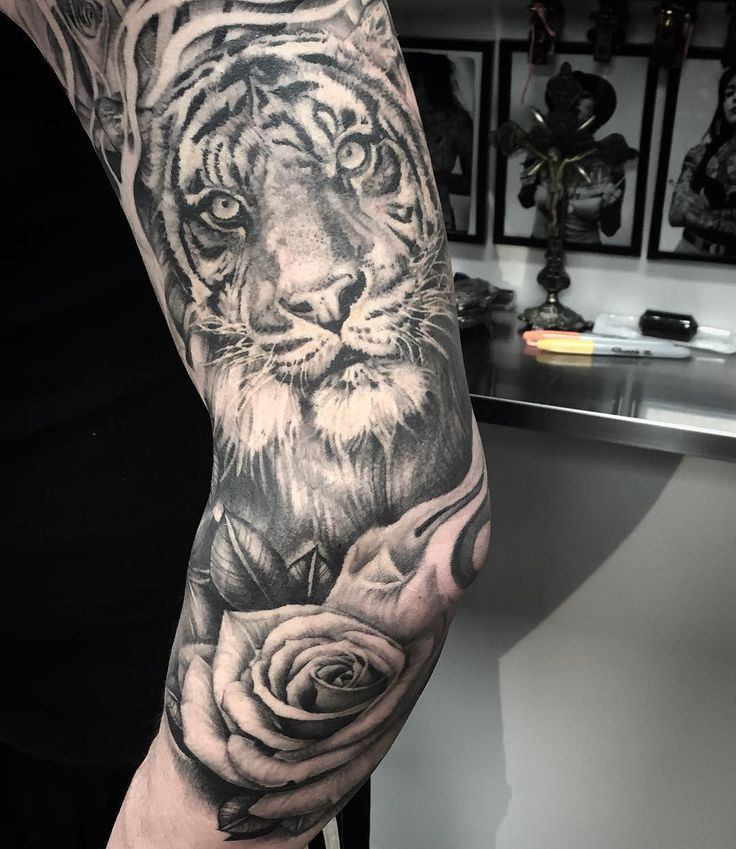 Healed favourite #tigertattoo
