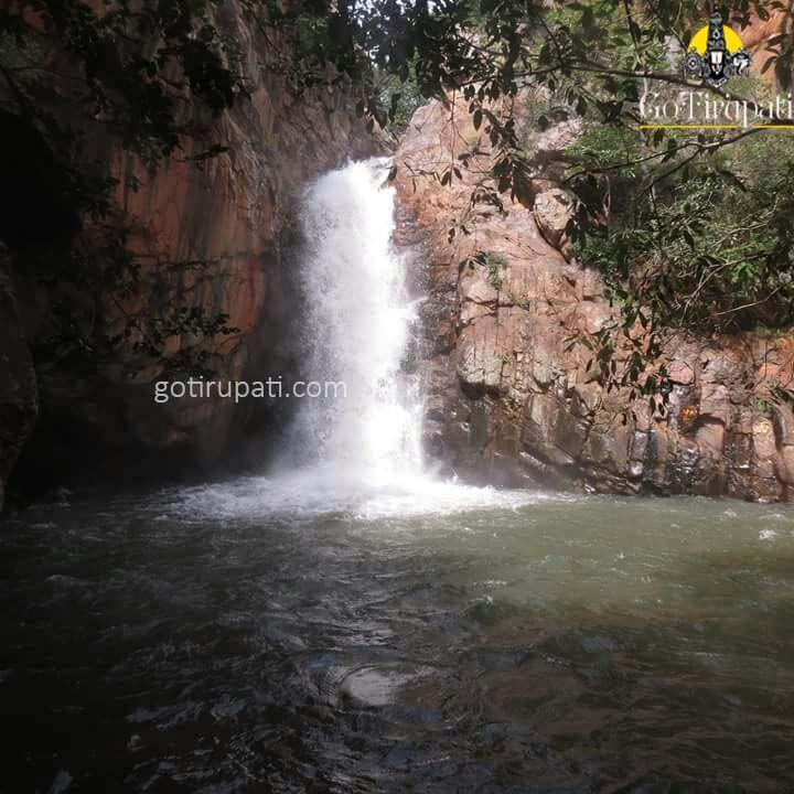 http://gotirupati.com/nagalapuram-sk-waterfalls/