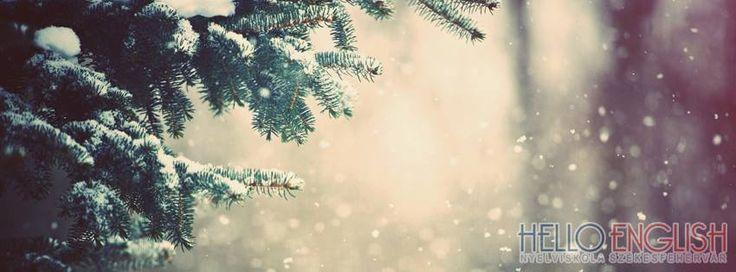 A Hello English Nyelviskola minden Székesfehérvári tanulójának és leendő tanulójának Boldog Karácsonyt kíván.