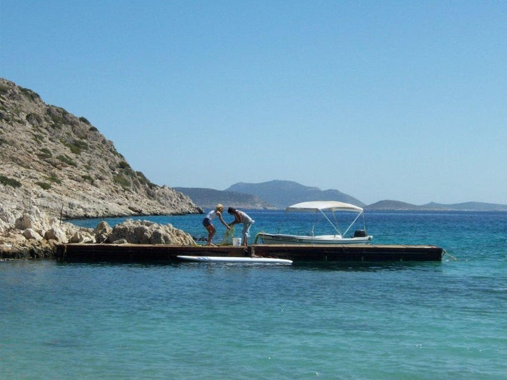 Family out fishing for Sunday lunch this past weekend on Halki. Rick Stein eat your heart out....!