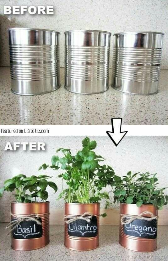 Herb pots out of soup cans