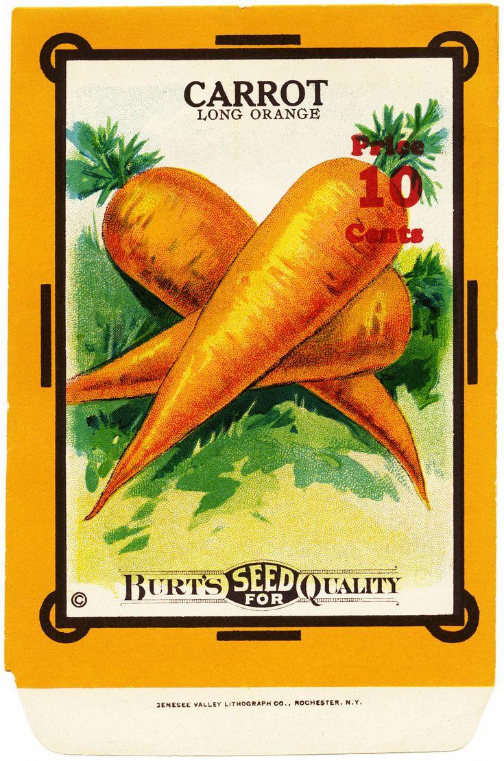 FREE Vintage Image ~ Carrot Seed Packet | Old Design Shop Blog