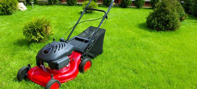 Lawn Mowing Gardening Castle Hill Fox Mowing Your Local Gardening Services And Lawn Mowing Specialists Sharpen Lawn Mower Blades Lawn Mower Blades Lawn Mower Repair
