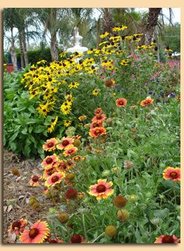 146 best Country Gardening ideas images on Pinterest Florida
