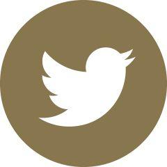 20k+ followers on Twitter