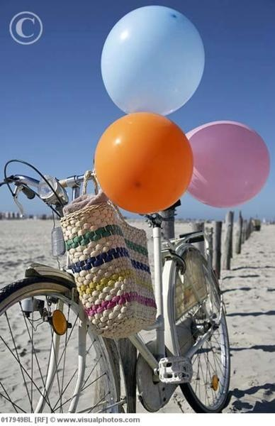 beach cruiser - now this is my kind of bike....