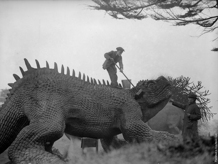 More Hylaeosaurus cleaning. (Photo by Fox Photos/Getty Images). February 1927