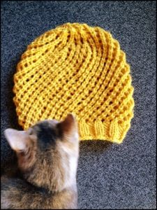 very quick knit slouch hat (love how the cat is in the picture).