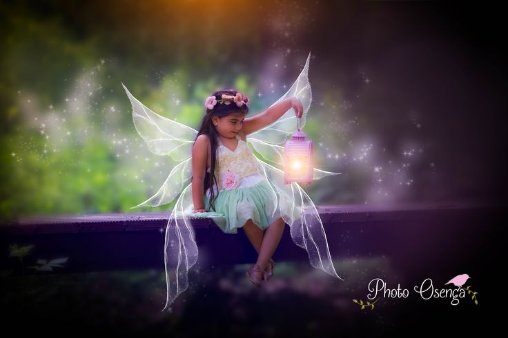 Fairy/Pixie - All you need is faith, trust and a little bit of pixiedust